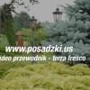 Video Przewodnik Terra Fresco