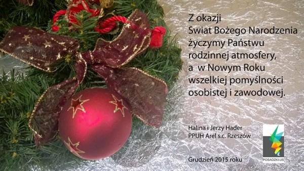 Świąteczne i noworoczne życzenia